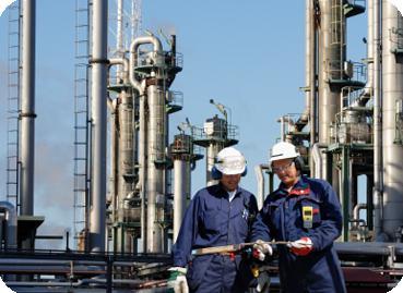 план мероприятий по обеспечению промышленной безопасности образец