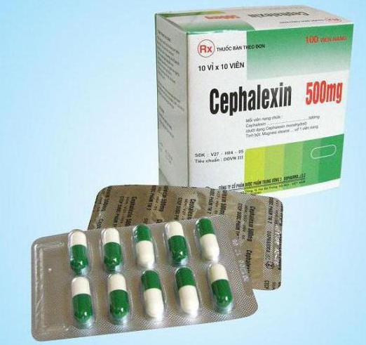 Антибиотики для беременных при гайморите 16