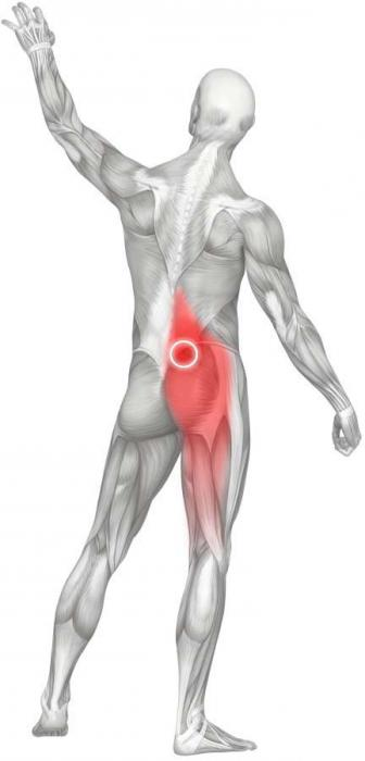 Что такое шишка на спине возле позвоночника и как ее вылечить?