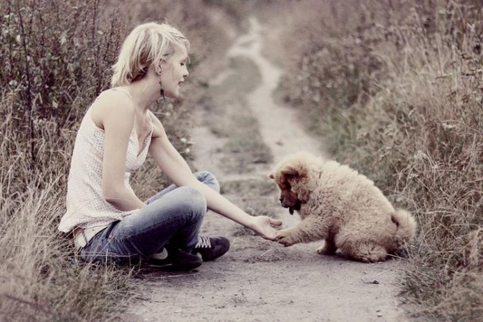 рейтинг ультразвуковой отпугиватель собак