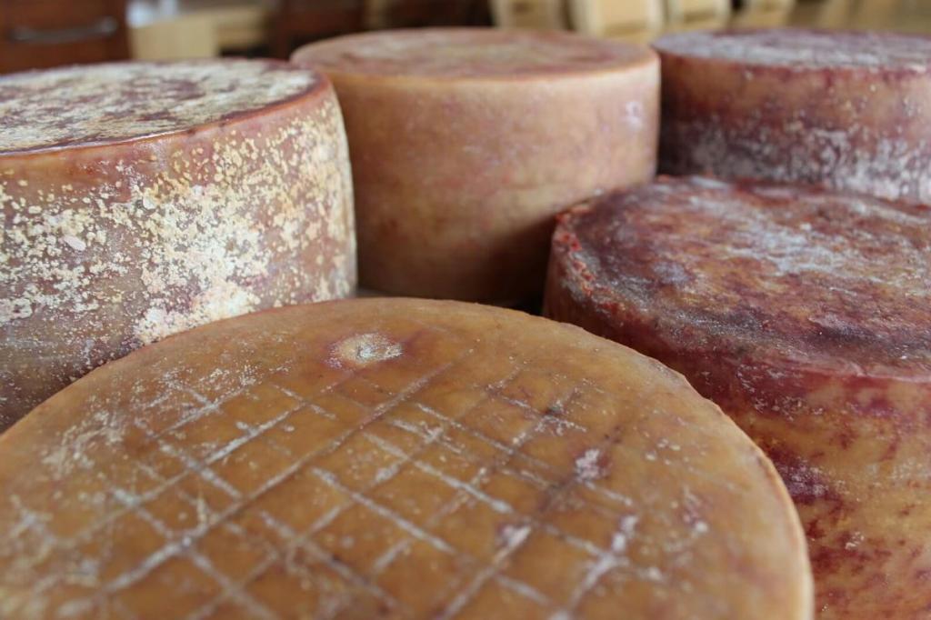 Нежирные сорта сыра. Калорийность сыра. Несоленый сыр твердых сортов