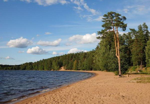 Как добраться: озеро Красавица. Карта Ленинградской области подробная