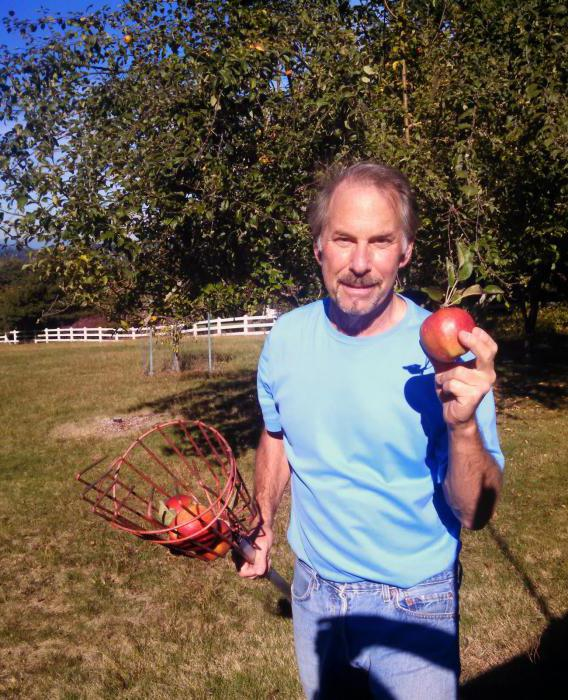 приспособление для сбора яблок из пластиковой бутылки