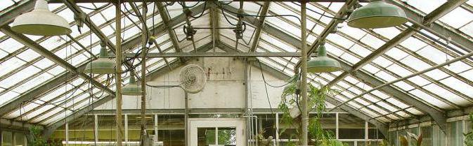 теплица с откатной крышей