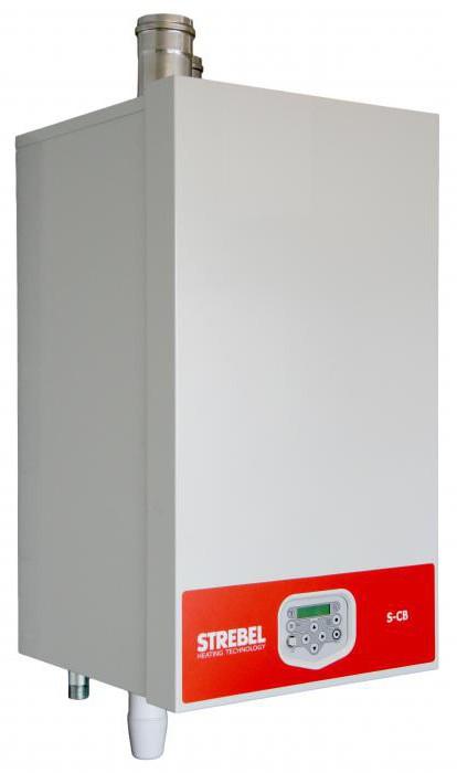 газовый котел с чугунным теплообменником