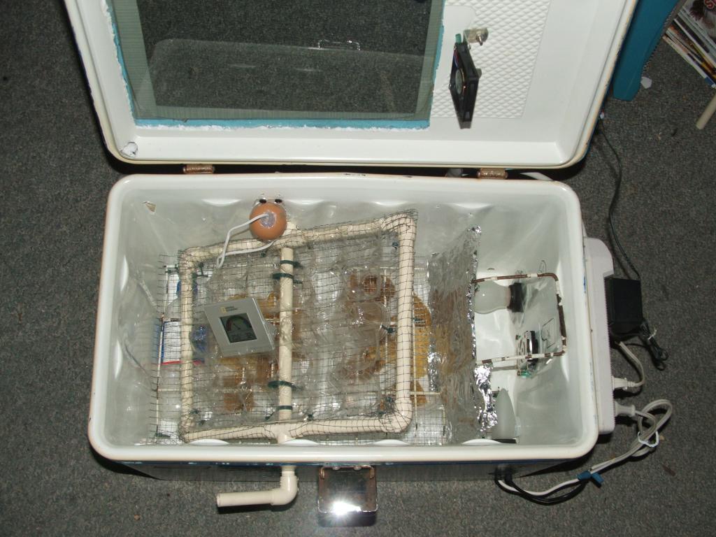 фото самодельных инкубаторов синдром