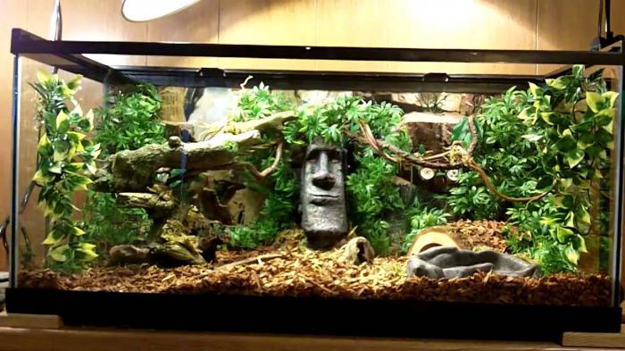 акватеррариумы для красноухих черепах своими руками