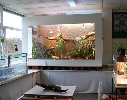 акватеррариумы для красноухих черепах