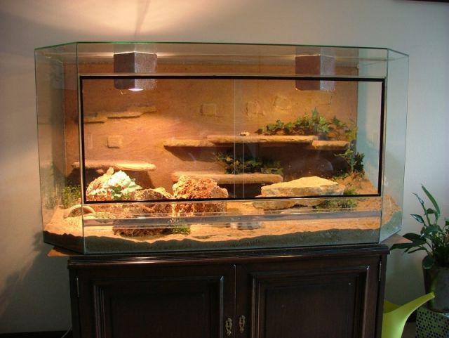 как сделать акватеррариум для черепахи своими руками