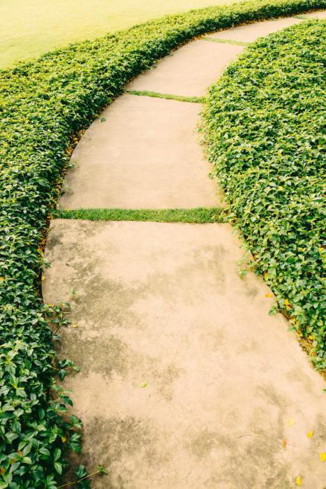 садовые дорожки своими руками формы
