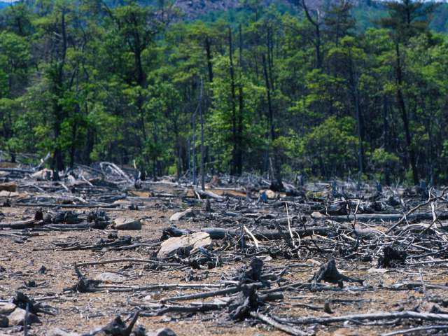 экологические проблемы водных объектов красноярского края