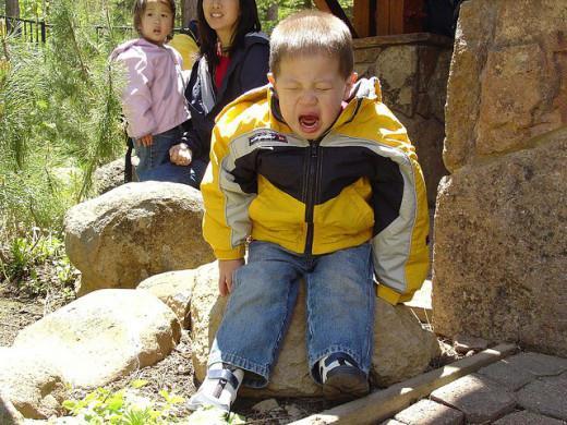 истерики у ребенка 2 года: