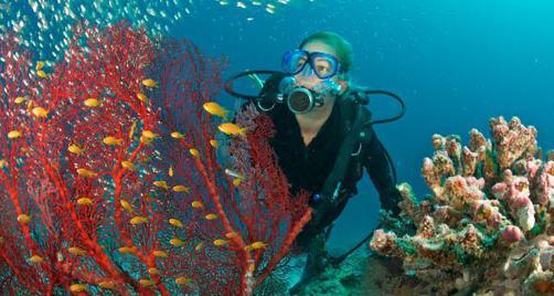 маска для подводного плавания tusa