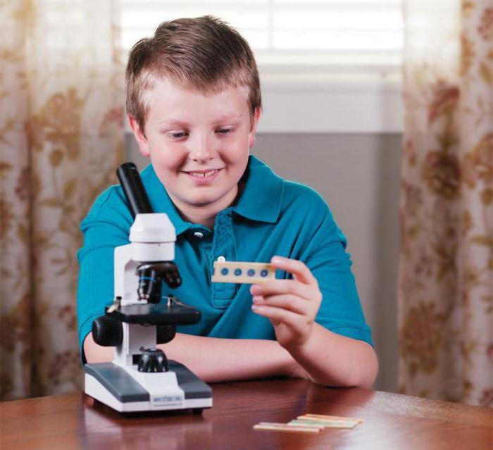 Картинка я с микроскопом