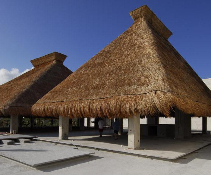 как называется соломенная крыша