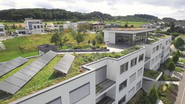 зеленая крыша фото