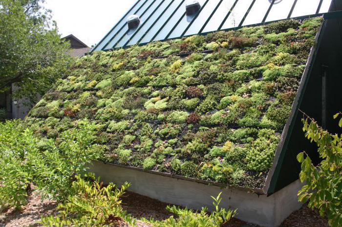 сайдинг зеленой крыши
