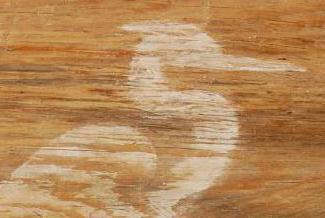 отбеливание древесины сосны