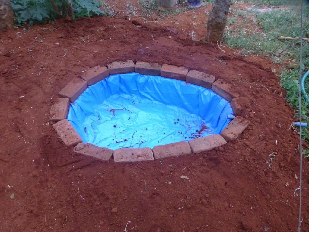 do-it-yourself pond for fish in the country