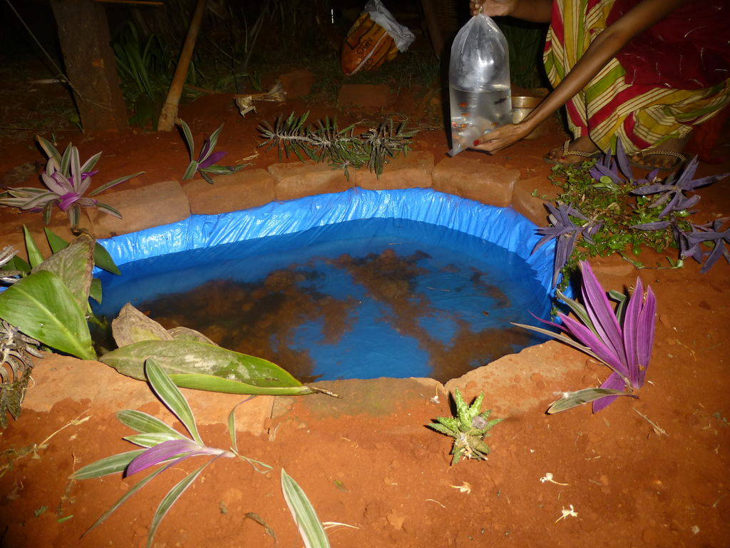 do-it-yourself pond in the country