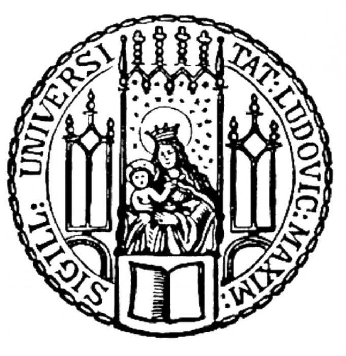 мюнхенский университет людвига максимилиана отзывы