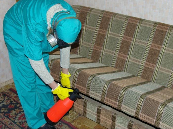 Ущерб от домашних условиях