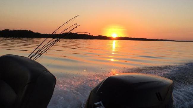 светлячок для ночной рыбалки