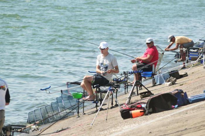пешня для зимней рыбалки своими руками чертежи