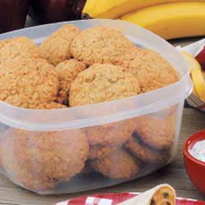 лучшие рецепты овсяного печенья для кормящих мам