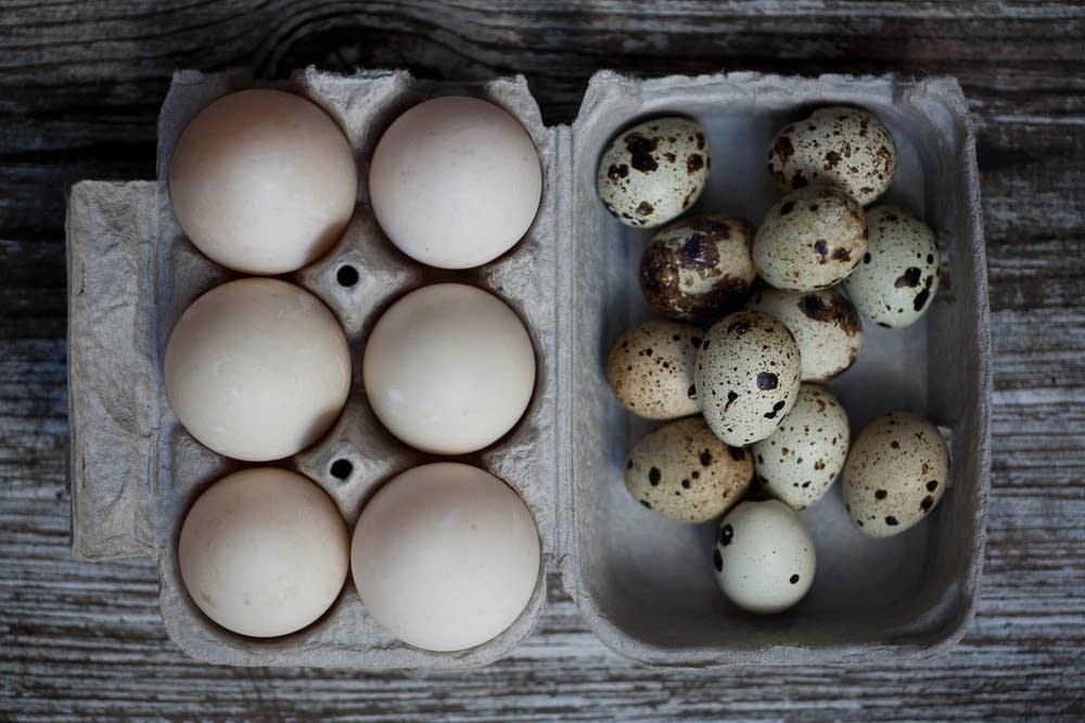 Пищевая ценность и калорийность яиц