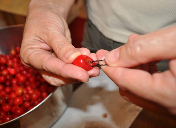 как быстро удалить косточки из вишни