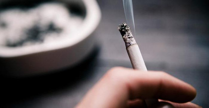 срок хранения сигарет
