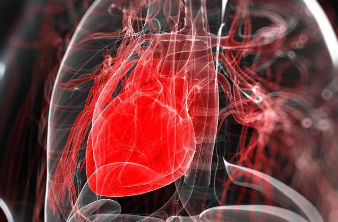 Почему сердце начинает сильно биться без причины