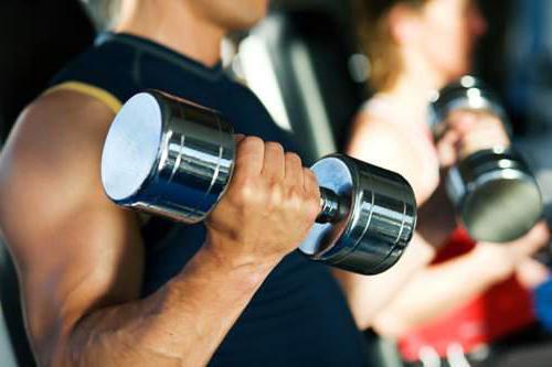 спортивные упражнения подбор упражнений