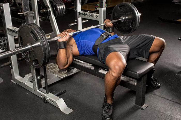 виды спортивных упражнений
