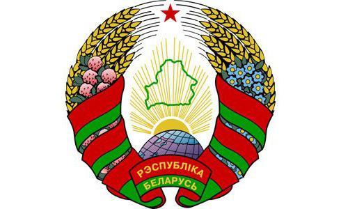 Принятие конституции Республики Беларусь
