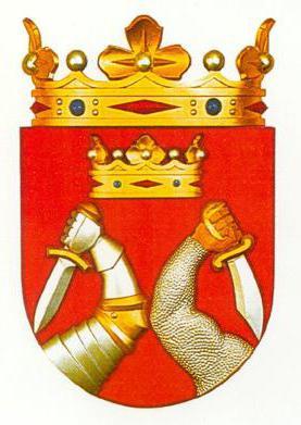 флаг республики карелия