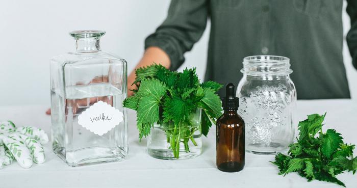 Как сделать настойку лопуха на водке