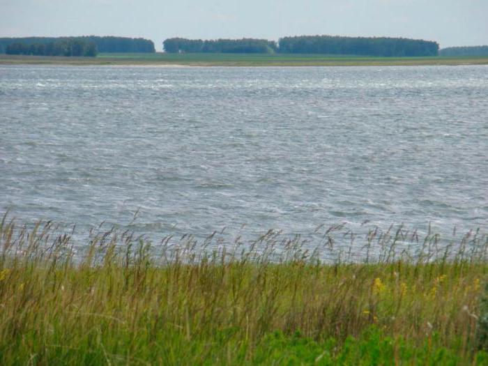 озеро горькое новосибирская область отзывы