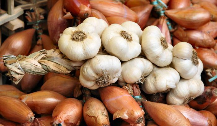 виды луковых овощей