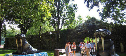 сафари парк в Краснодаре