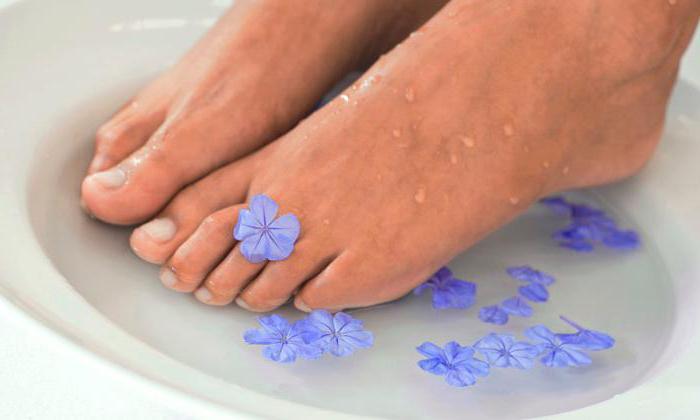 Чем вылечить грибок между ног