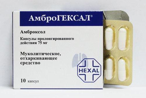 Как принимать амброгексал таблетки