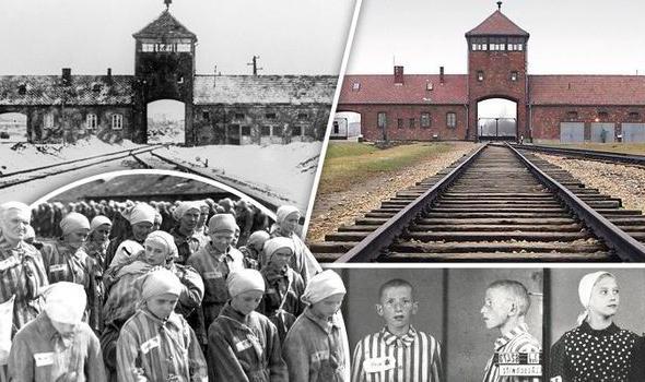 Музей Освенцима. Музей Аушвиц-Биркенау