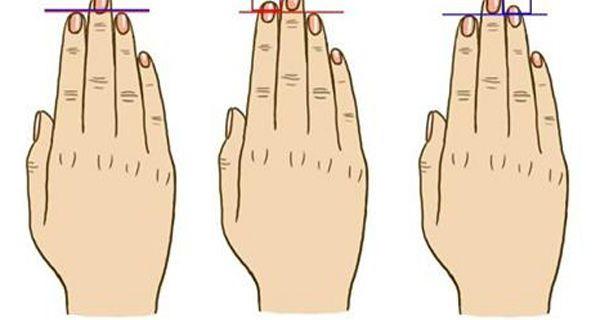 Длина пальцев рук: значение в психологии