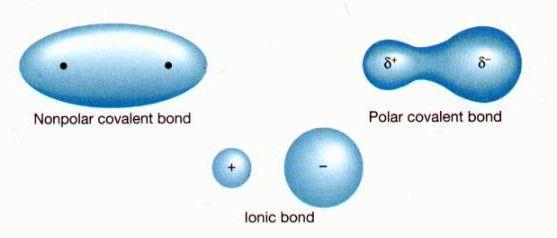 ковалентный неполярный тип связи
