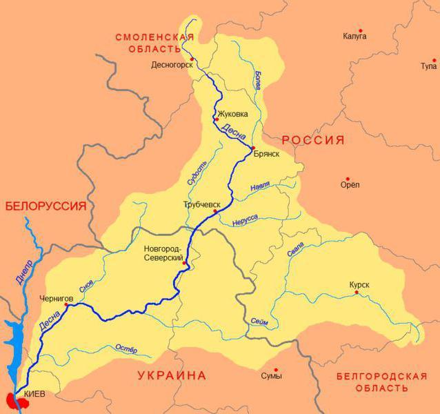 река десна карта