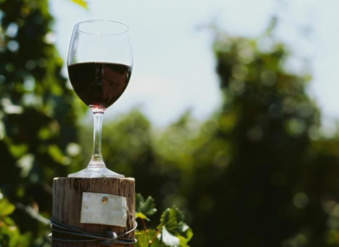 Полезно ли красное сухое вино