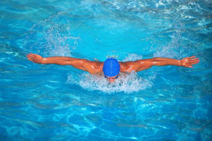 как лучше плавать в бассейне чтобы похудеть