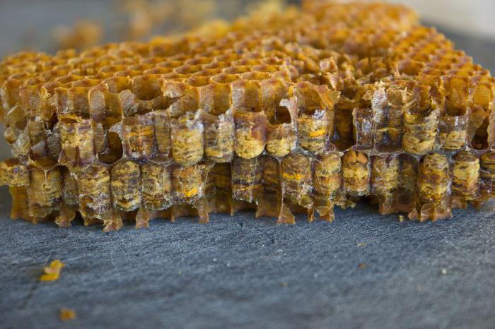 виды пчелиных продуктов